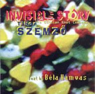 Láthatatlan történet