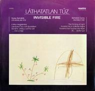 Dukay Barnabás: Láthatatlan tűz