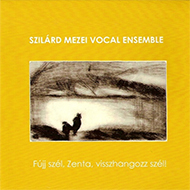 Szilárd Mezei Vocal Ensemble - Fújj szél, Zenta, visszhangozz szél