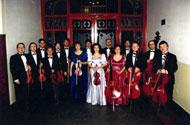Solti Kamarazenekar (Solti Chamber Orchestra)
